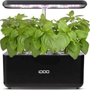 A small herb garden with artificial lights and basil growing inside it.