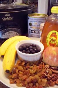 Slow Cooker Whole Grain Oatmeal   Cook Better Than Most Resturants