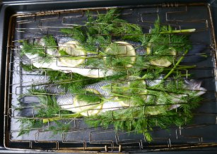 Layer the Fish with Dill and Lemon