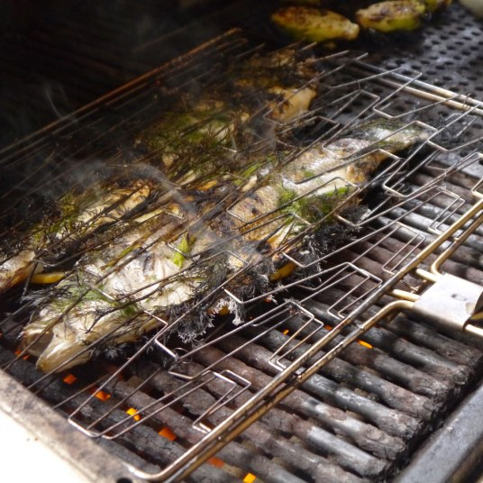 Fish Basket on the Grill
