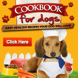 Cookbook For Dogs Is A New And Cutting-edge, Recipe Manual