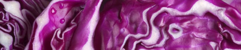cropped-purple-cabbage-2-5401.jpg