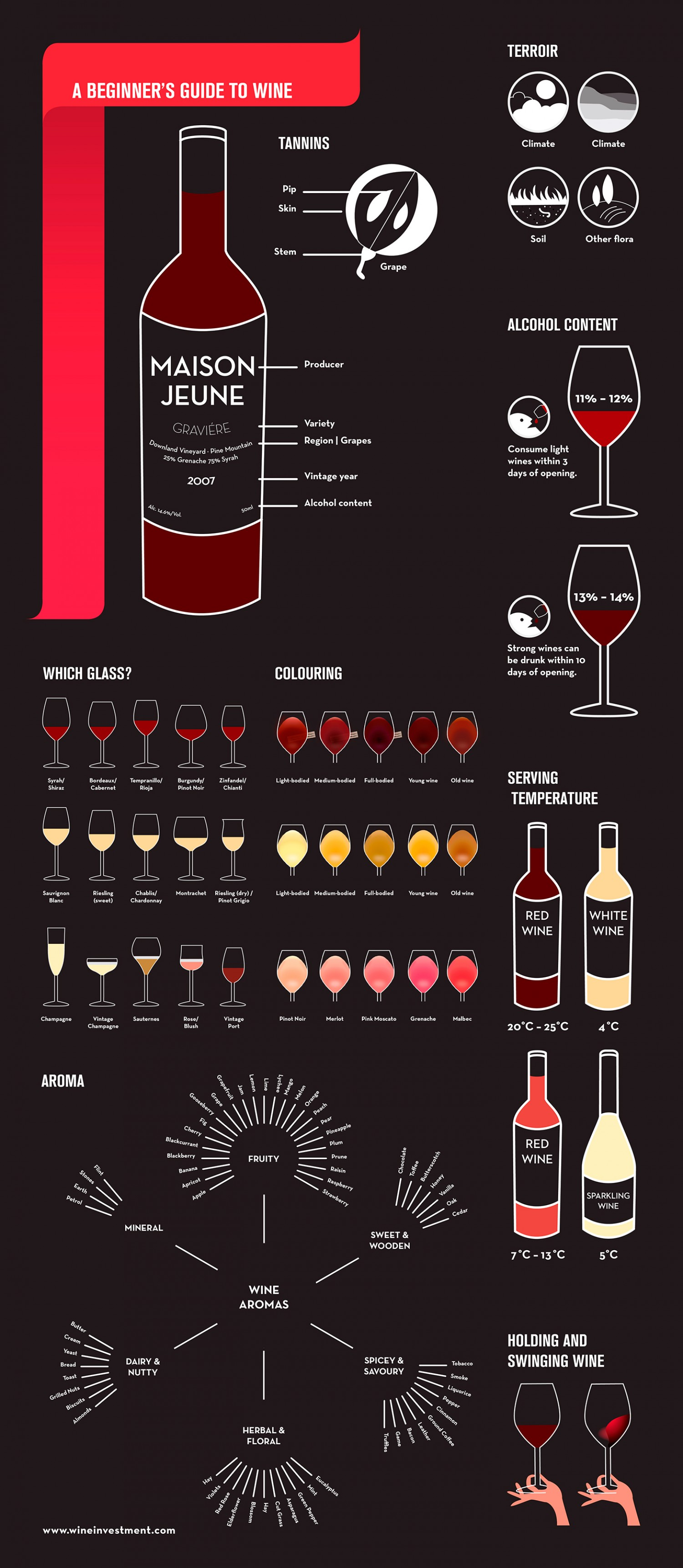 A Beginner's Guide to Wine