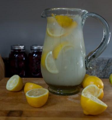 Agave Lemonade-1