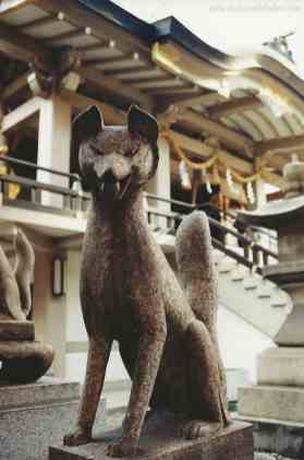 These stone dogs stand guard outside a Shinto Temple in Osaka