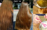 Magical Hair Regrowth Treatment, Cure Hair Loss, Cure Baldness, Stop Hair Fall