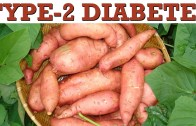 Type 2 Diabetes Control Naturally – Sweet Potatoes By Diabetic Cure
