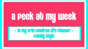 A Peek At My Week – In My Erin Condren Life Planner – Family Style