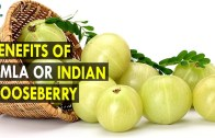 Benefits of Amla or Indian Gooseberry – Health Sutra – Best Health Tips
