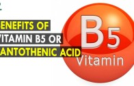 Benefits Of Vitamin B5 Or Pantothenic Acid – Health Sutra – Best Health Tips