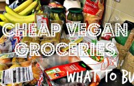 AFFORDABLE VEGAN GROCERIES – WHAT TO BUY + PRICES – Cheap Lazy Vegan