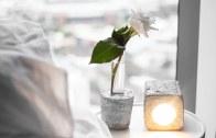 DIY Minimalist Style Vase – Rachel Aust