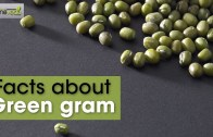 Benefits of Green Gram