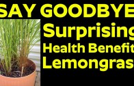 Say Goodbye To Doctor – Surprising Health Benefits of Lemongrass
