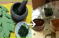 This Leaves Cure Diabetes Naturally – 100% Work