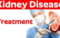 How to Treat Kidney Disease – Keep Healthy Your Kidney