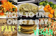 How To Live On $3 a Day – VEGAN EDITION – 2 – Days 2+3 – Cheap Lazy Vegan