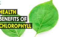 Health Benefits Of Chlorophyll – Health Sutra – Best Health Tips