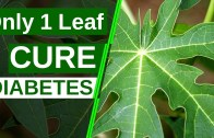 Only 1 Leaf To Cure Diabetes Permanently – Say Goodbye To Diabetes – Health Tips