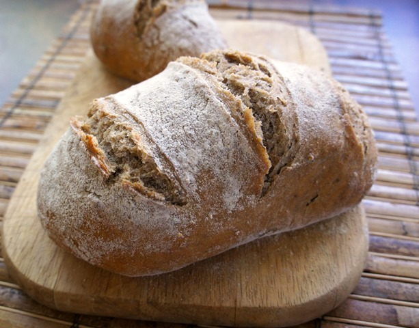 Peter Reinharts Artisan Breads Every Day Pdf