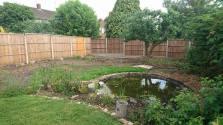 garden_during