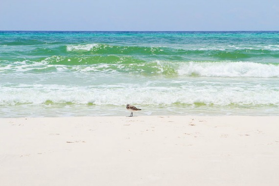seaside-florida-2