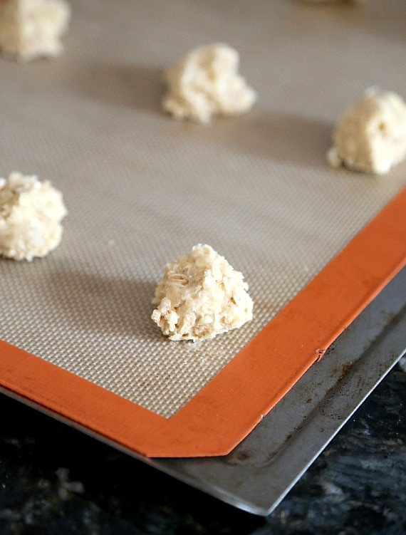 Oatmeal Cookie Batter