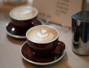 latte-drink