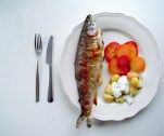 https://cookingbrainsblog.wordpress.com/2012/11/25/fancy-fish-about-the-snout-of-the-trout/