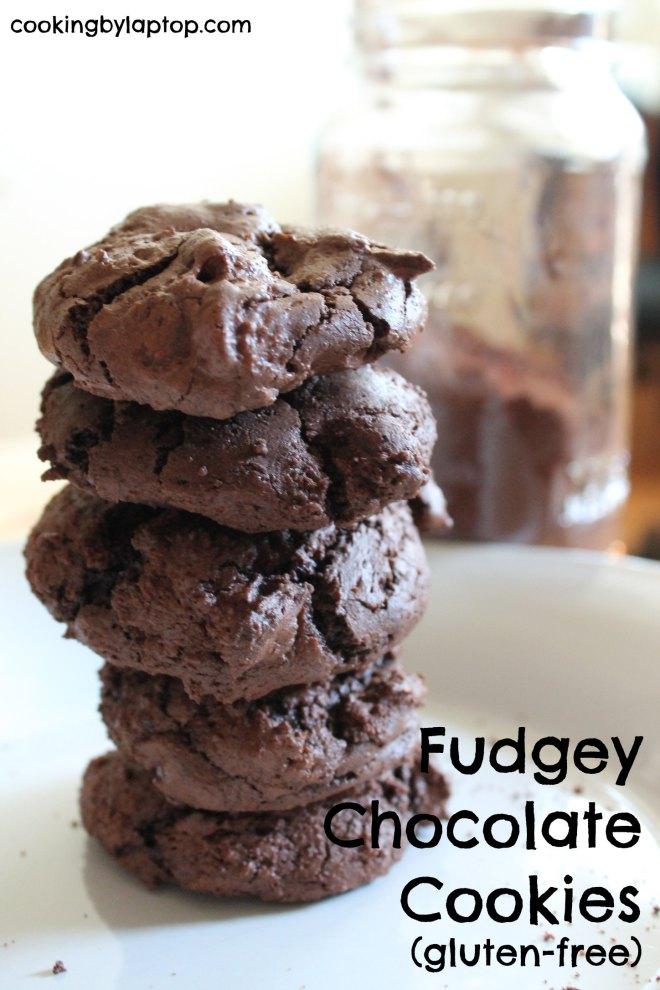 Gluten Free Fudgy Chocolate Cookies