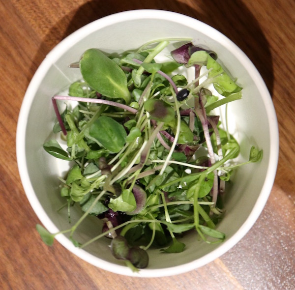 Living Produce Aisle Microgreens