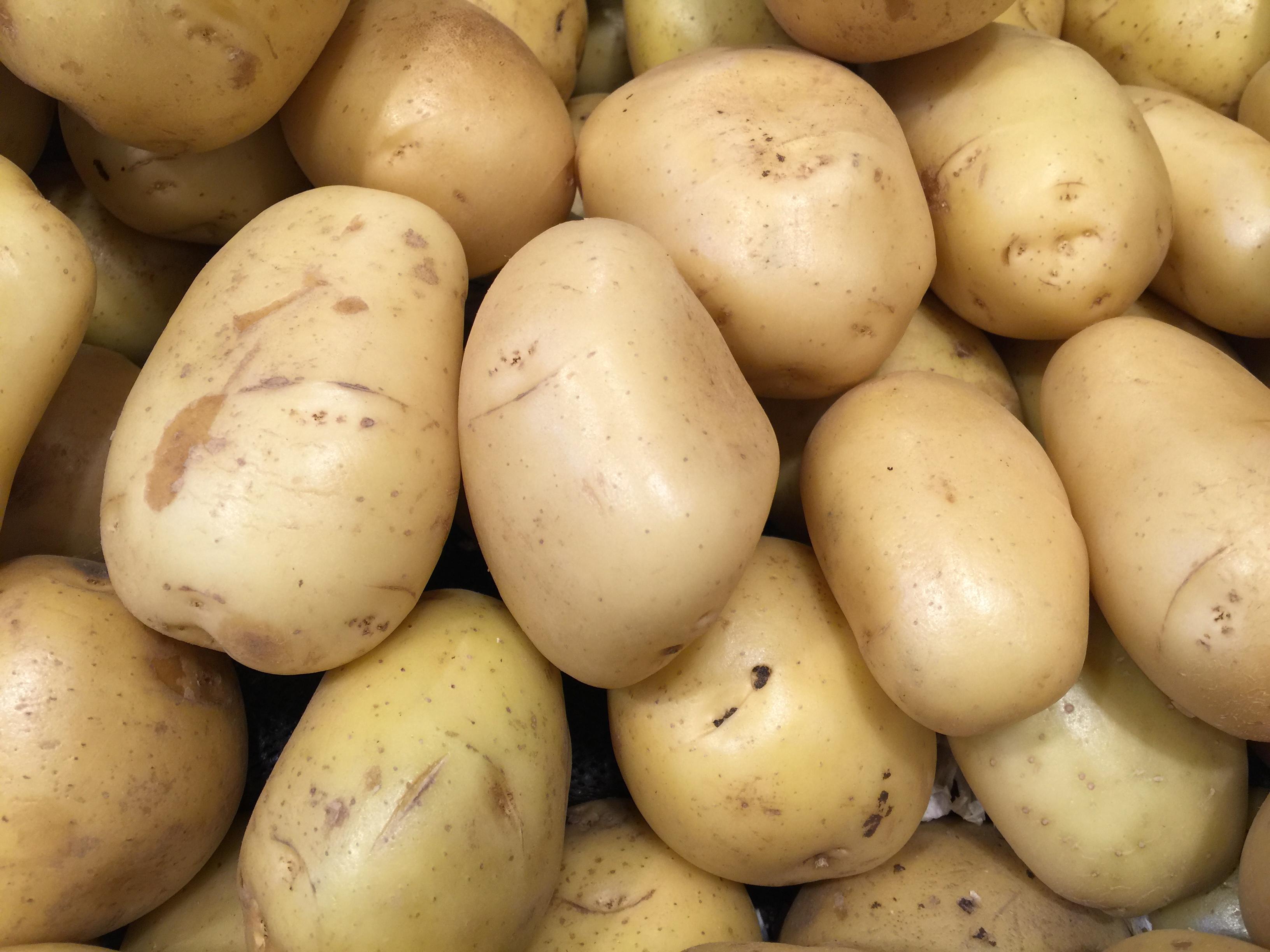 Yukon Gold Potatoes - CookingCoOp.com