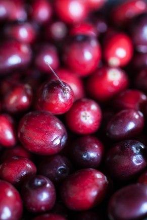 Cranberries-1-3
