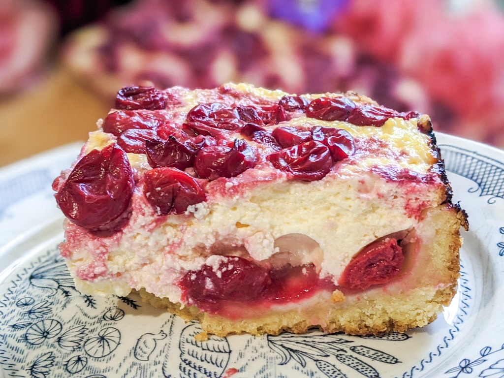 Slice of Ukrainian cheesecake with fresh cherries