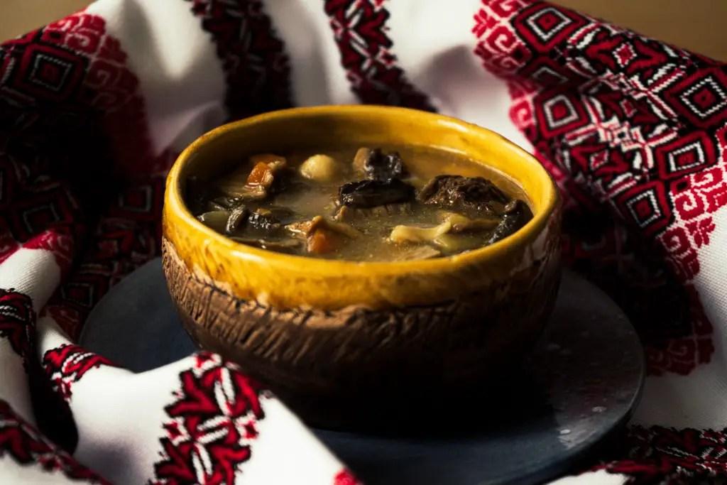Carpathian Mushroom Soup dramatic picture