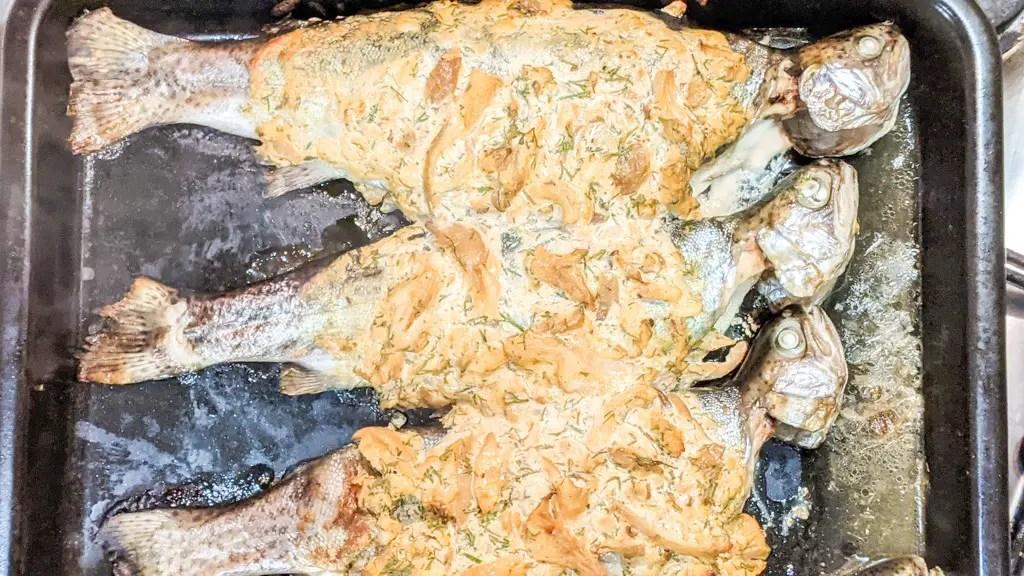 carpathian trout baked under sour cream