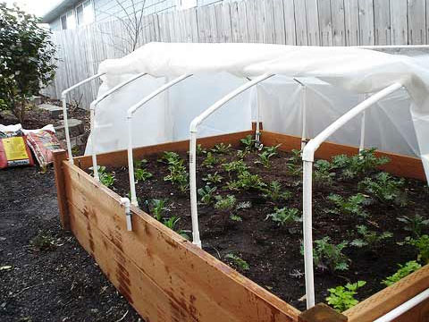 How To Make A Cold Frame For A Raised Garden Bed