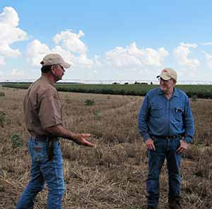 TAWC project manager, Rick-Kellison, talks to dry-land farmer Keith Phillips