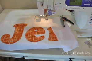 Applique and a Photo Quilt