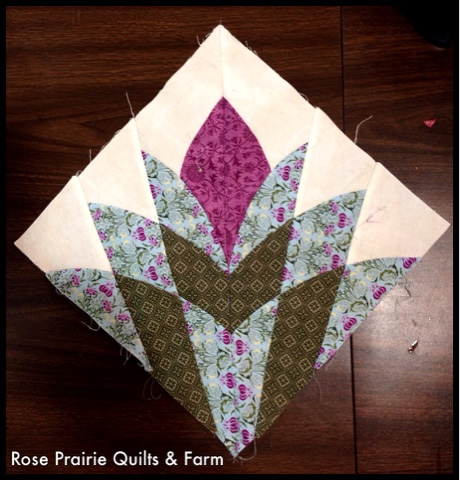 Photo by Kat of Rose Prairie Quilts & Farm