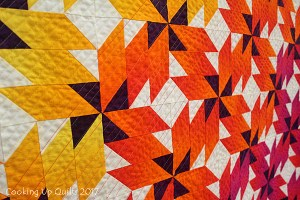Speaking at Scenic River Quilt Guild