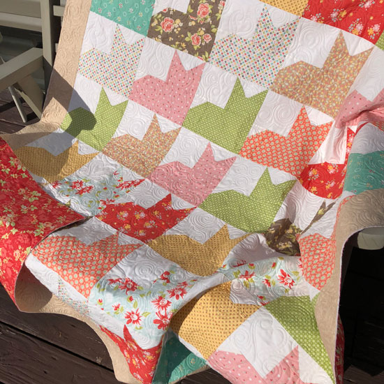 Kitty quilt with Corey Yoder fabrics