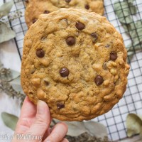Giant Walnut Chocolate Chip Oatmeal Cookies