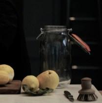 Preserving Lemons  Nowness