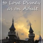 Top 5 Reasons to Love Disney as an Adult