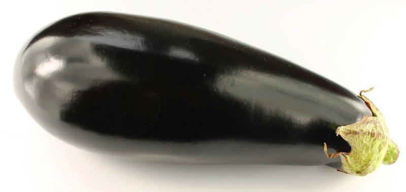 eggplant parmigiana vidya sury
