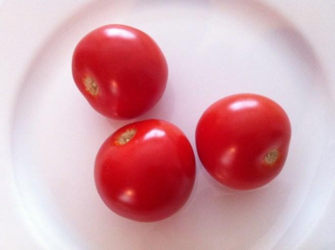 Campari tomatoes