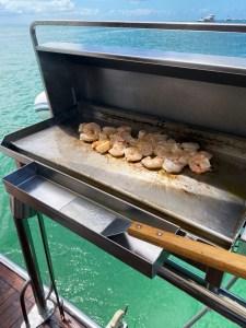 316 marine grade stainless steel boat barbecue Australia