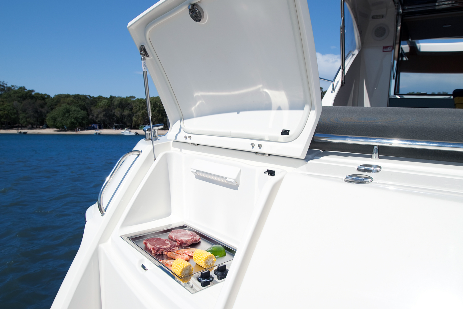 marine stainless steel electric flush mount boat bbq Australia