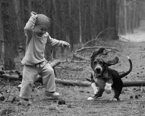 boy-n-dog